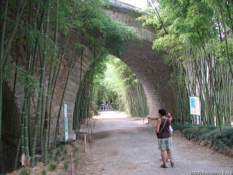 Autour d 39 anduze dans le gard la bambouseraie - La bambouseraie a anduze ...